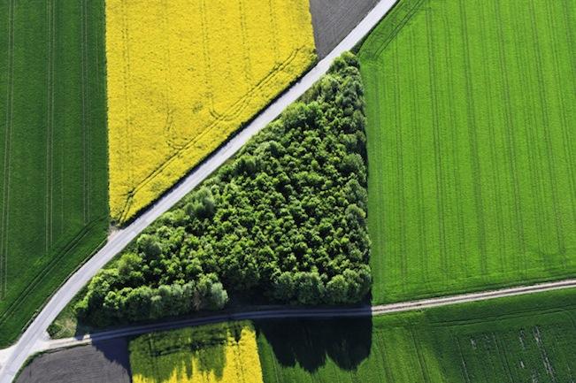 Luftaufnahme von einem grünen Dreieck