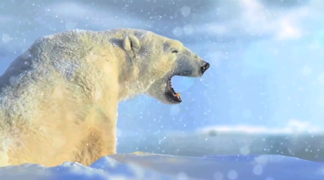 40 ans WWF France showcse interactif experience digitale 6