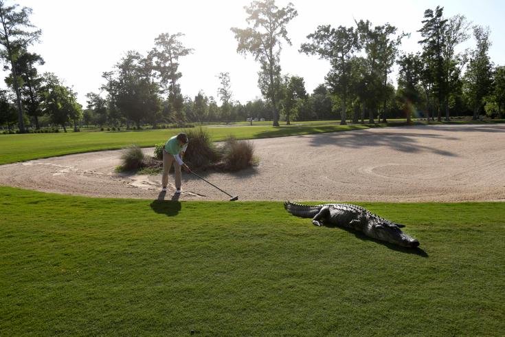 APTOPIX Zurich Classic Golf