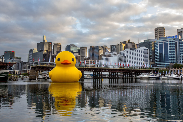 Sydney Festival's giant Rubber Duck installation