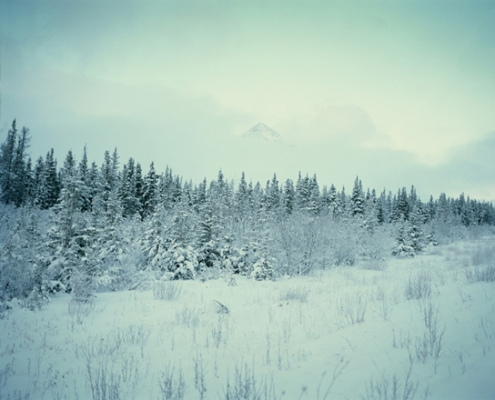 Alaska Highway 6
