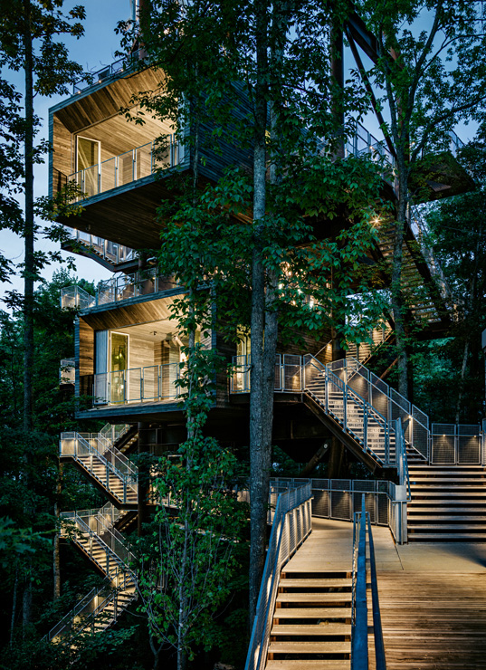 Treehouse_Gallery-1