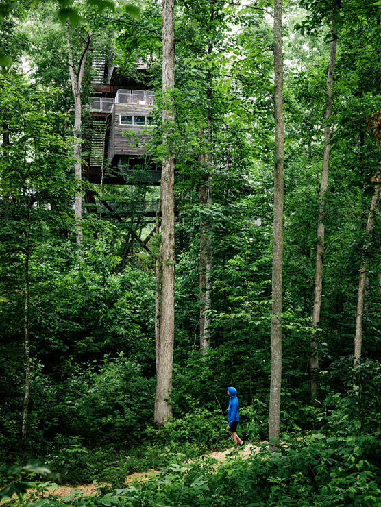 Treehouse_Gallery-3