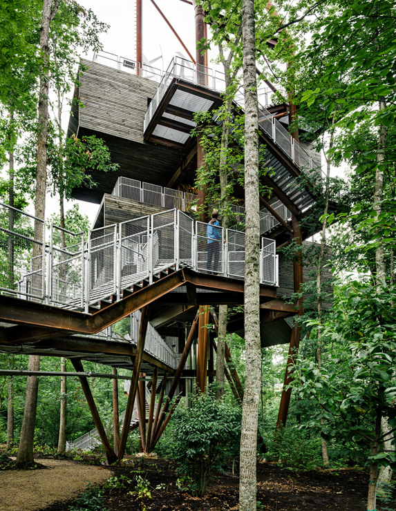 Treehouse_Gallery-4