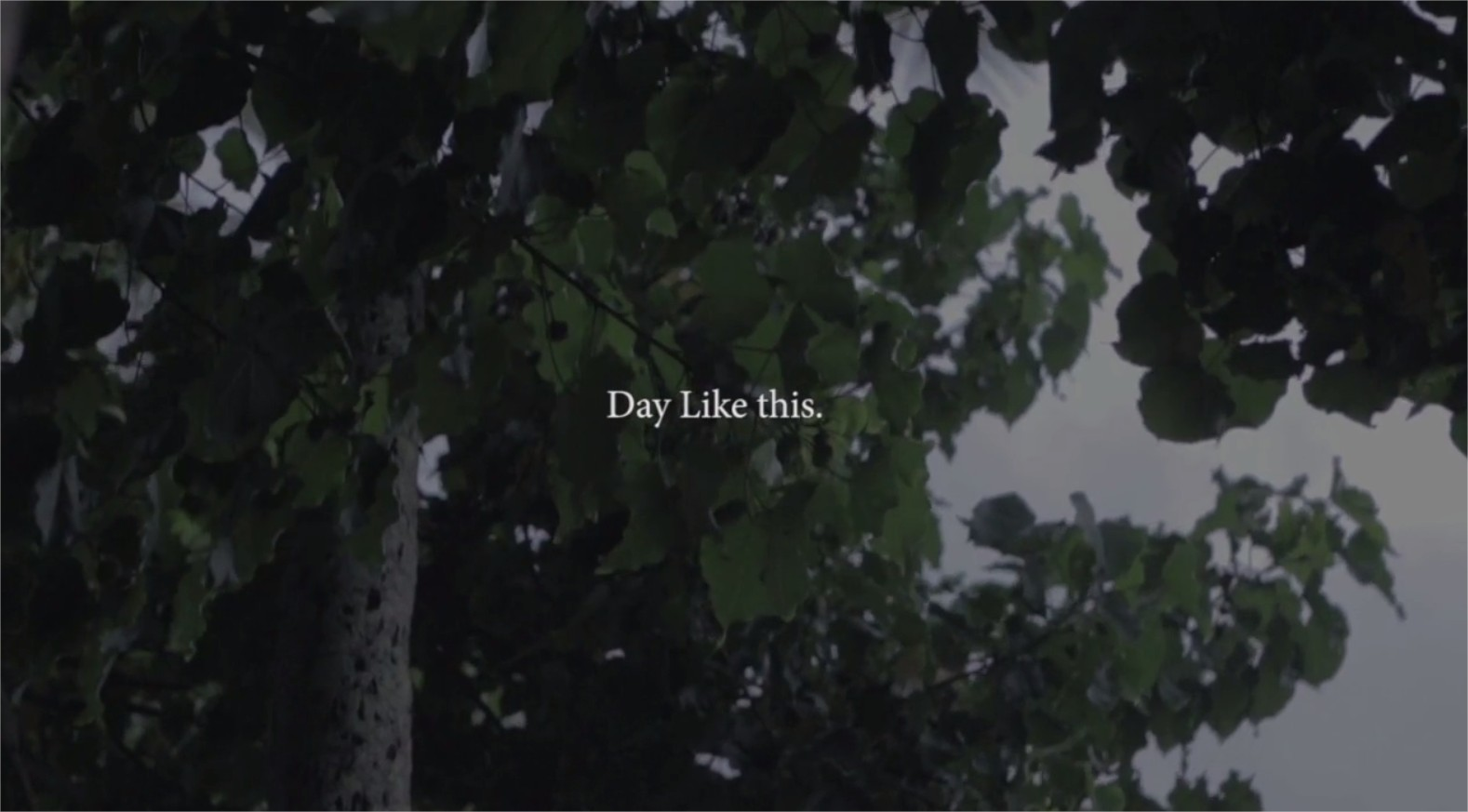 Day Like this - Jamie O ' Brien on Vimeo - Google Chrome