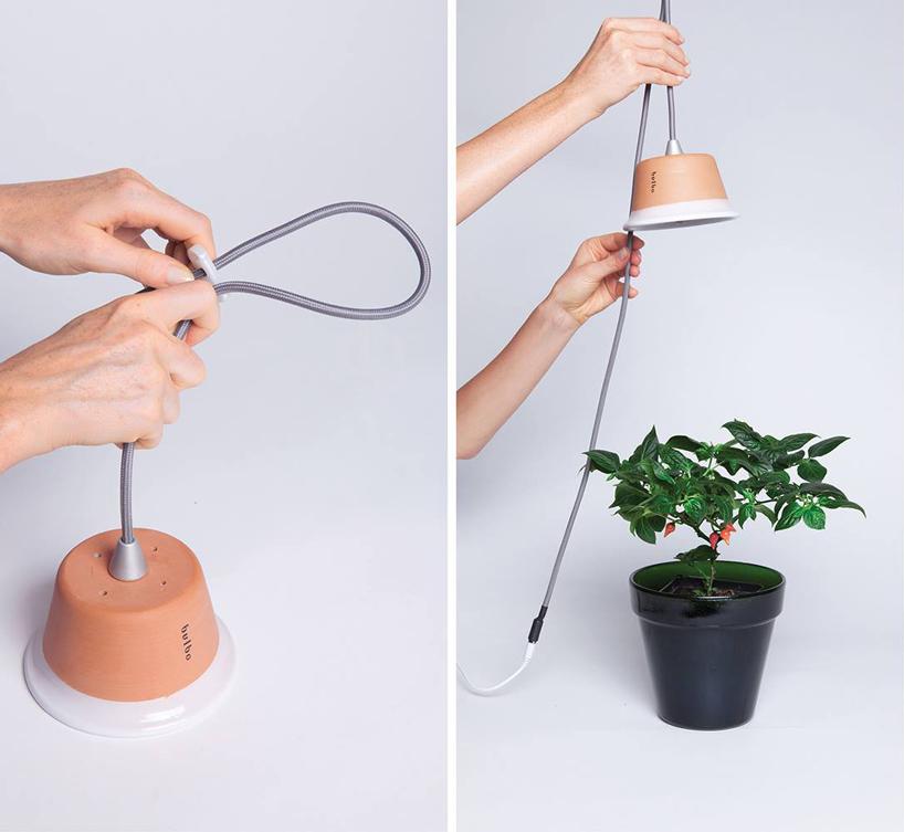 bulbo-cynara-and-quadra-designboom05