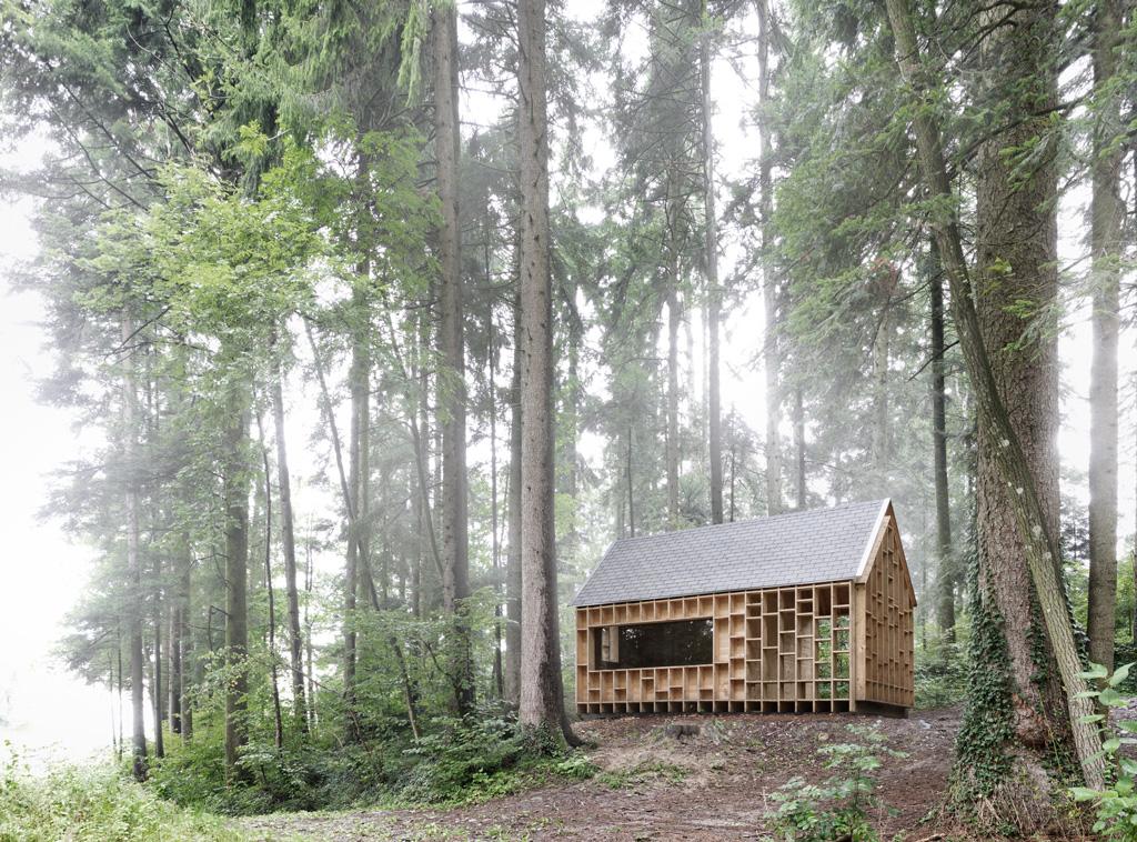 Wald-RGB_BR_13_NEU_o