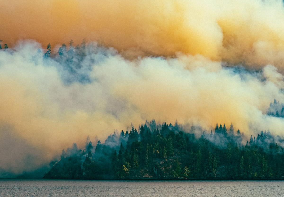 circa1983-forest-fire-2