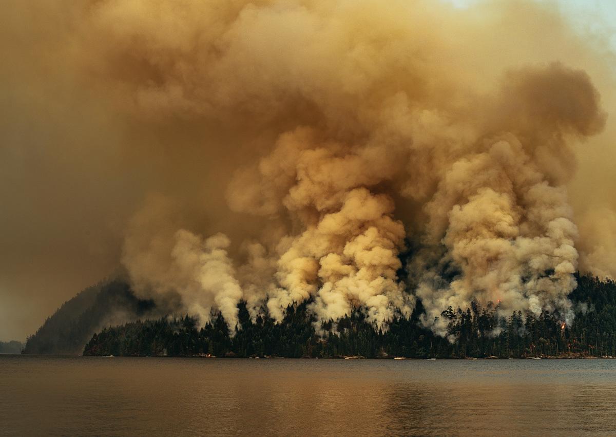circa1983-forest-fire-6