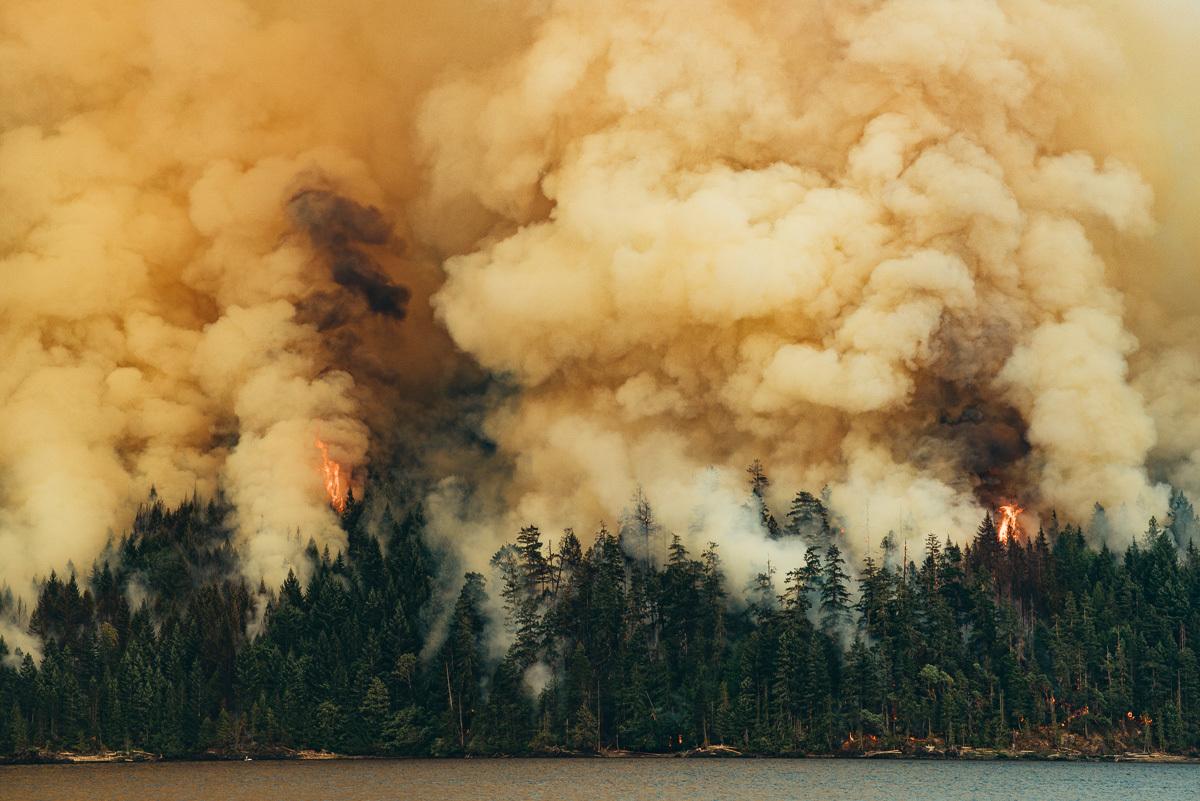 circa1983-forest-fire-7