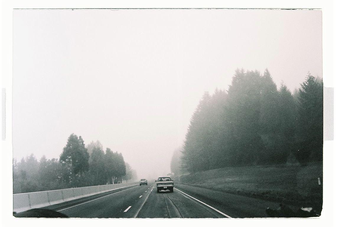 Les oeufs brouillard 5