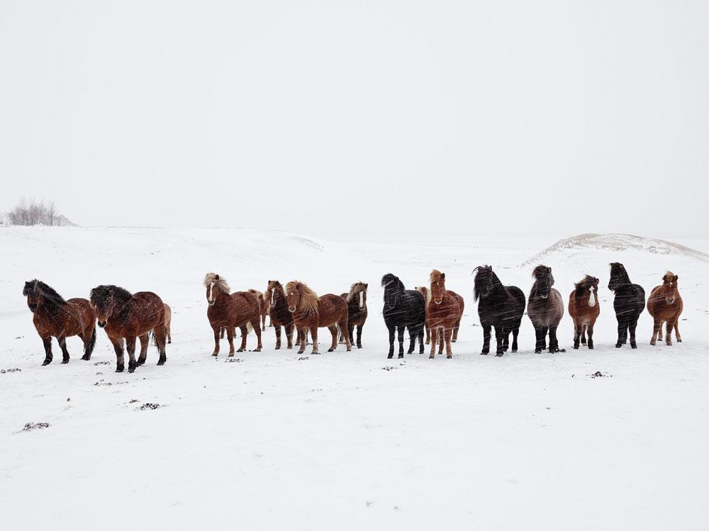 anoush-abrar-iceland-10