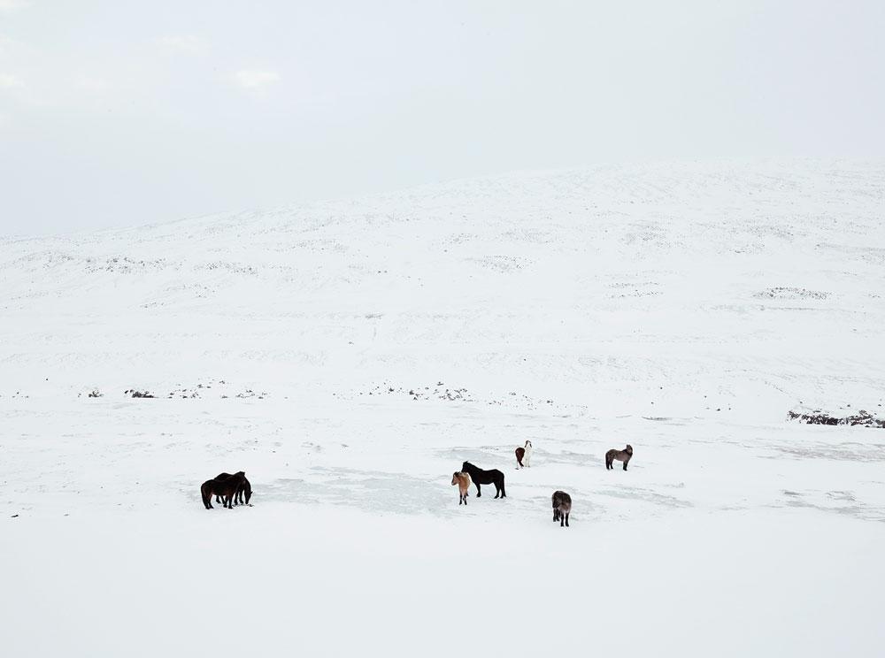 anoush-abrar-iceland-13