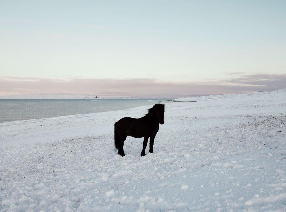 anoush-abrar-iceland-22