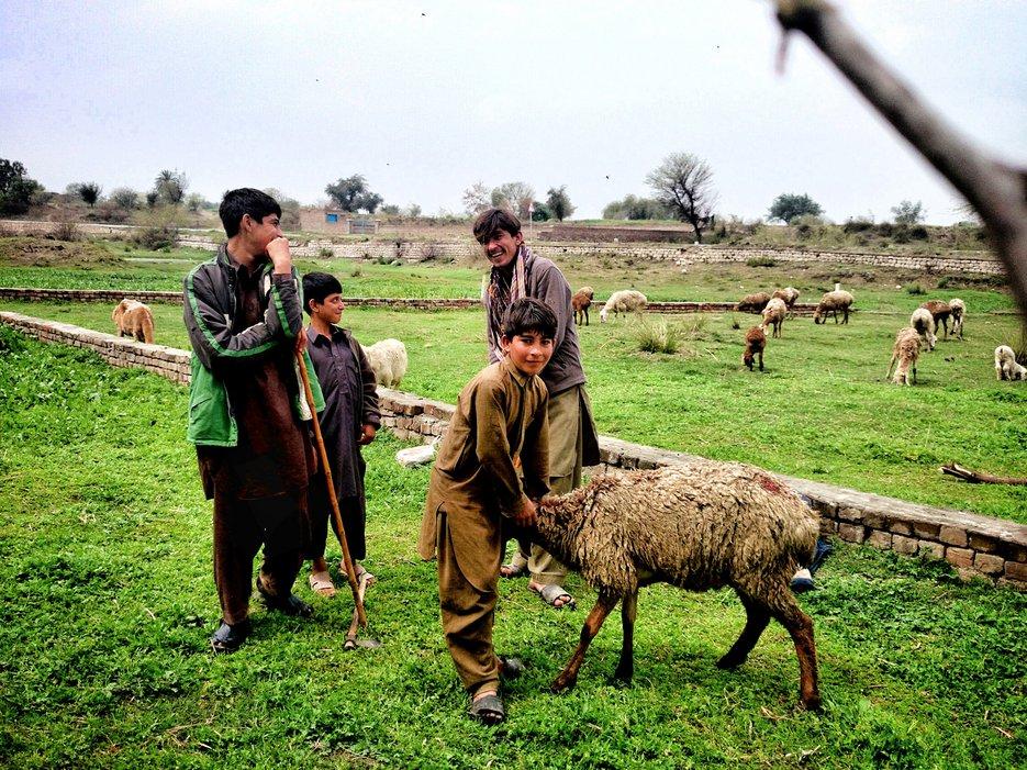 Pakistan, Pakistan par Zohaib Tariq.