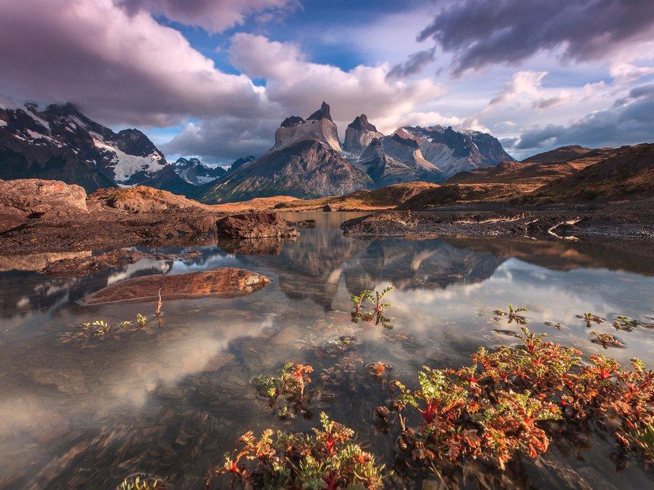"""Eden's Garden, parc de """"Torres Del Paine"""" au Chili, par Adriano Neves"""