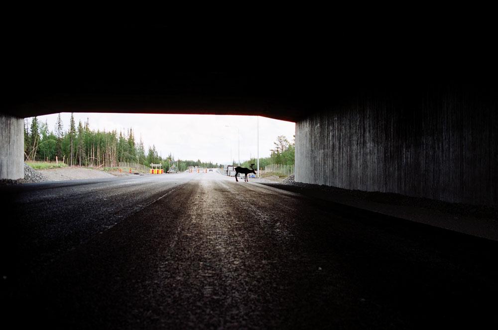 scandinavie-fabien-voileau-23
