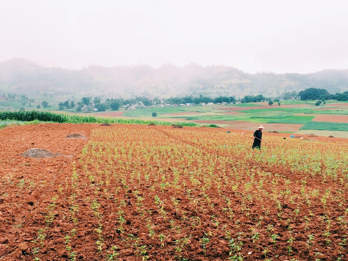 trek-myanmar-chloe-brunet13