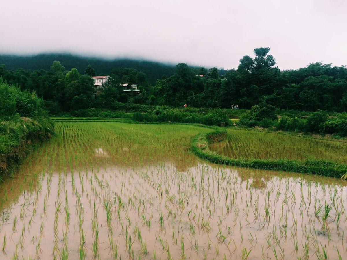 trek-myanmar-chloe-brunet19