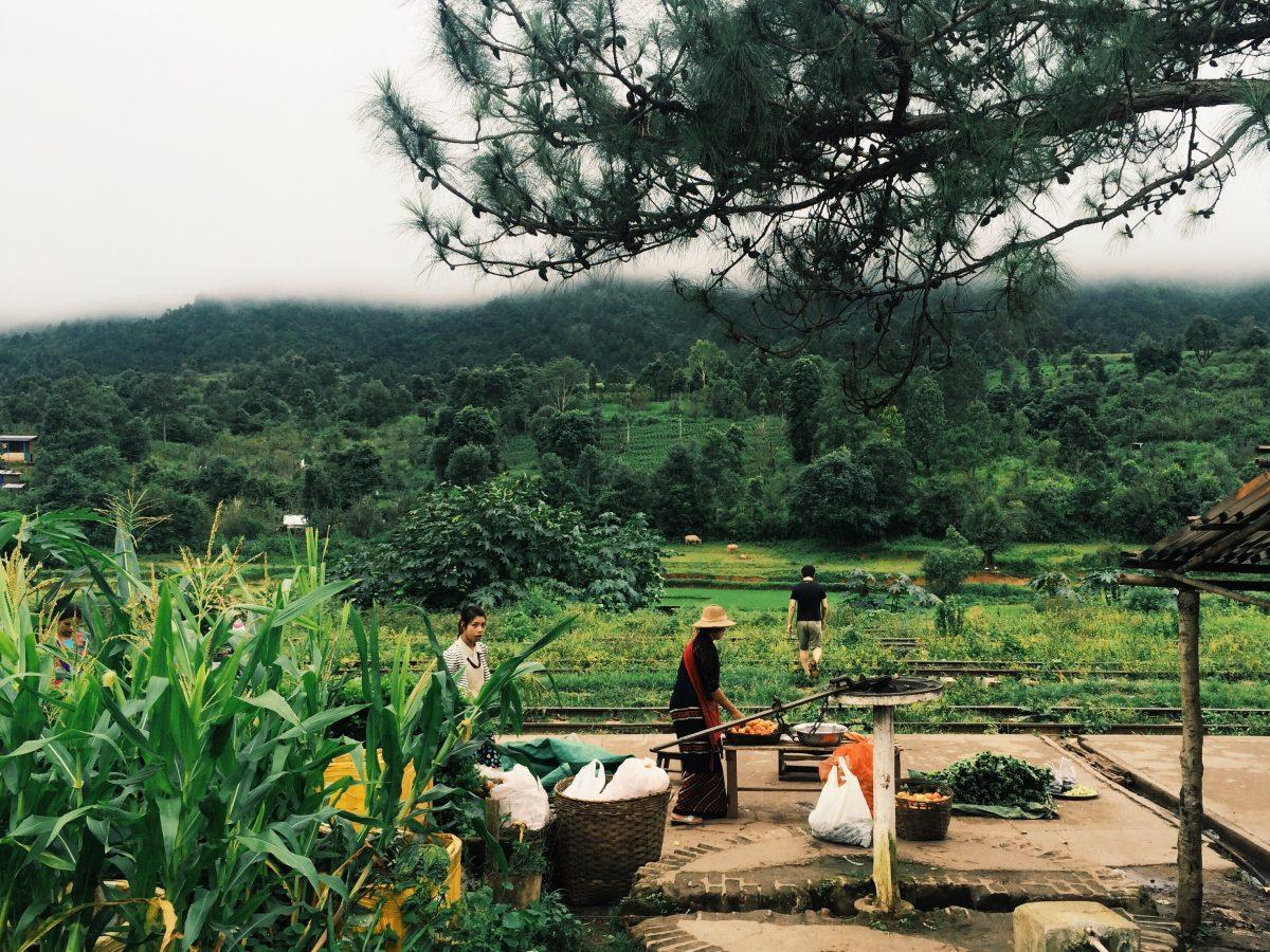 trek-myanmar-chloe-brunet7