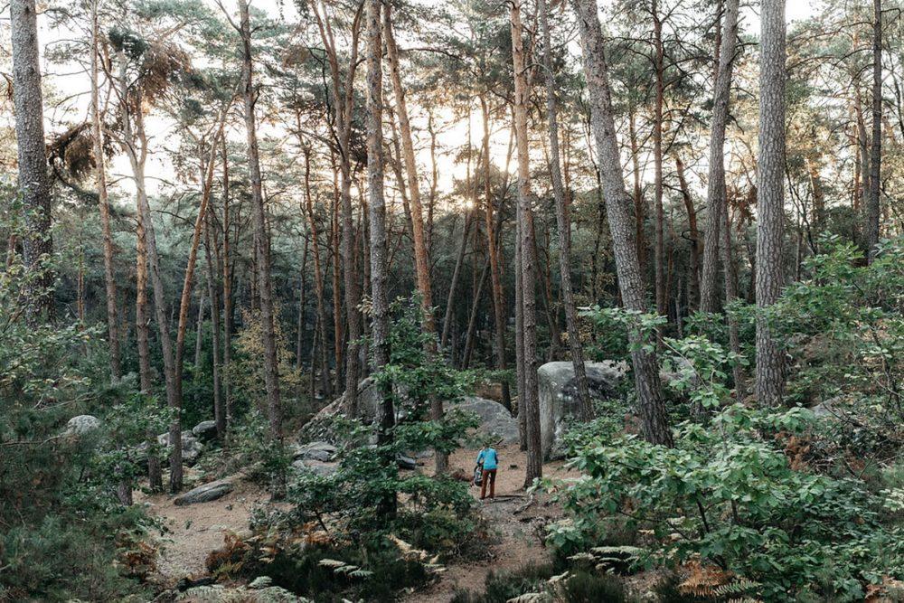 Un lever de soleil dans la forêt de Fontainebleau pour bien débuter une session d'escalade en bloc