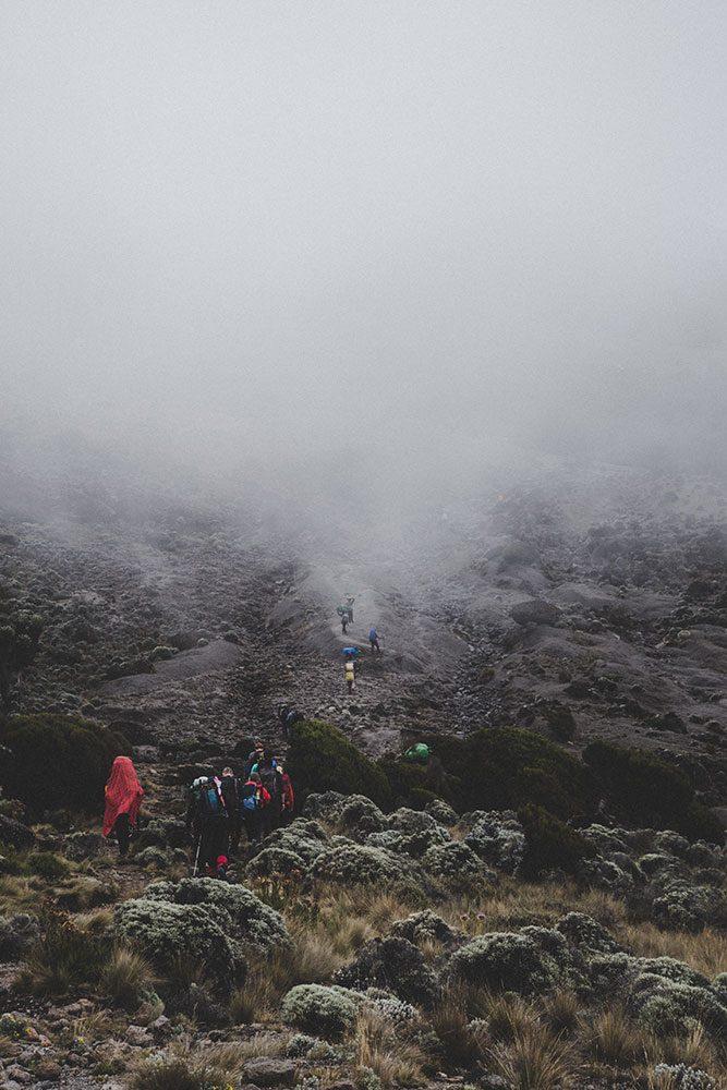 Volcan Kilimandjaro — Tanzanie