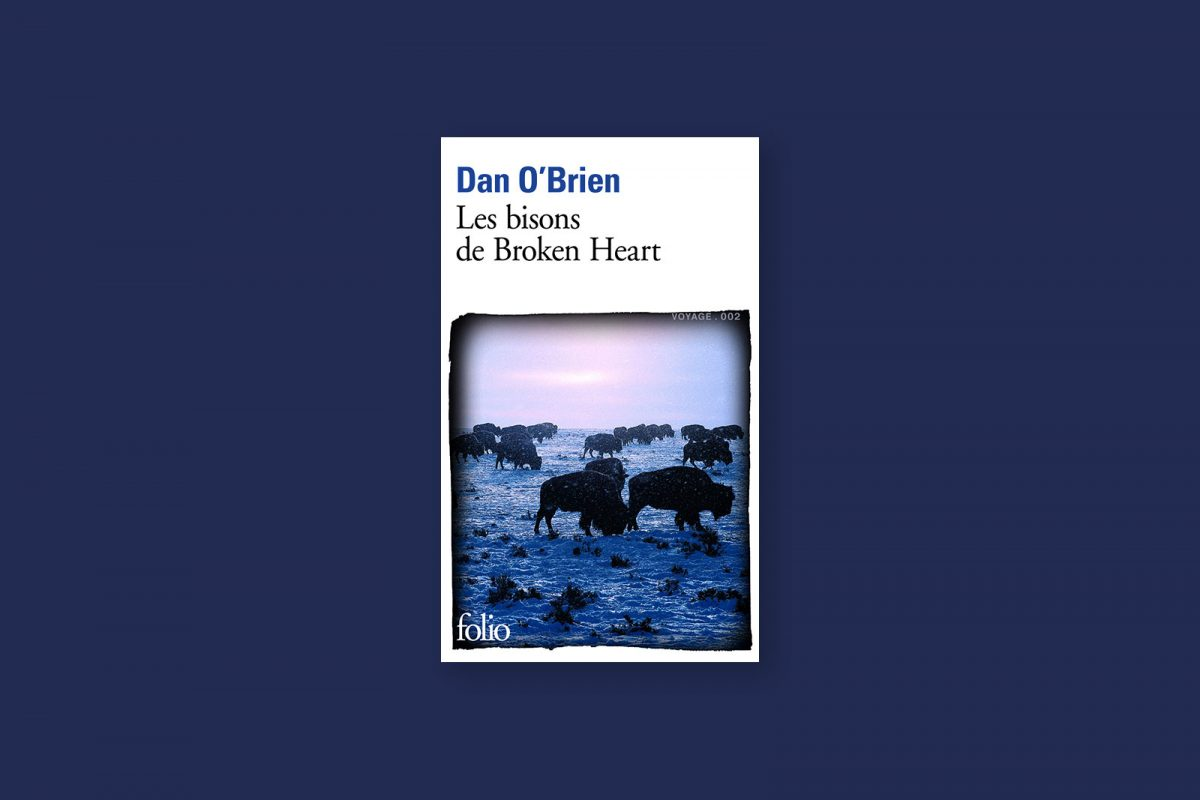 Livre 82/100 — Les bisons de Broken Heart — Dan O'Brien (2001)
