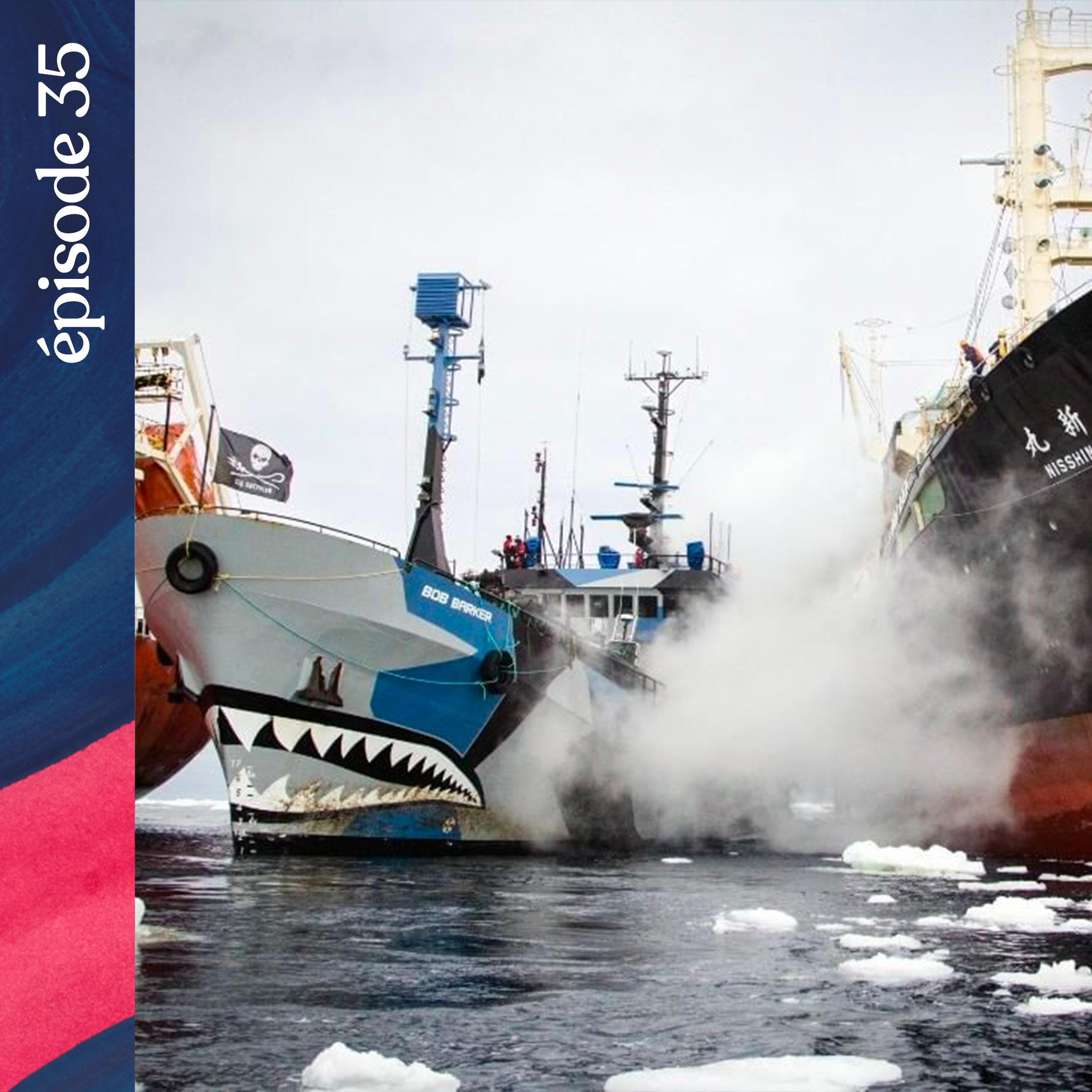 Baladeurs-ep35-pirates-mers-australes