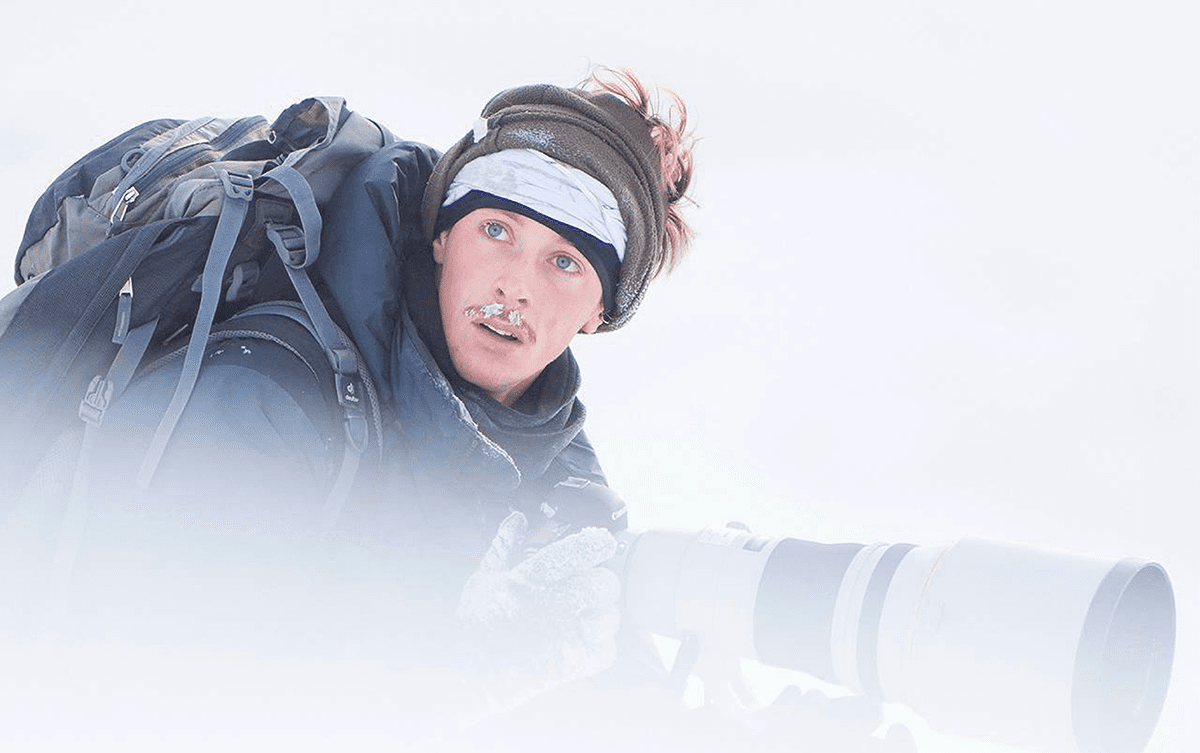 Jérémie Villet photographe animalier en Norvège, Les Baladeurs