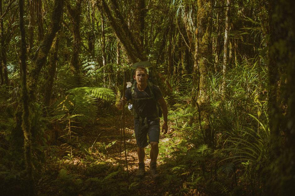 Dans la forêt de Raetea sur le Te Araroa Trail en Nouvelle-Zélande